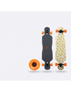 SurfLogic Longboard FreeStyle Fresh Serie