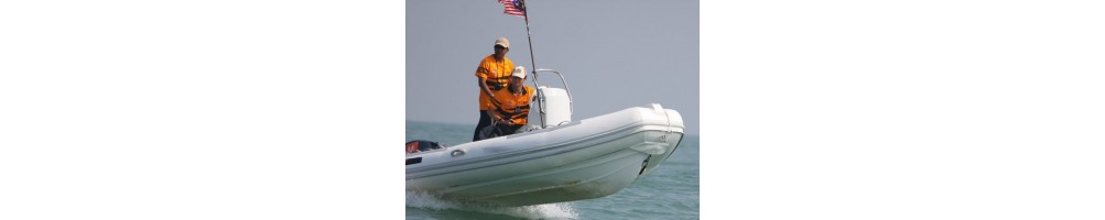 Professional RIB - Rigid Inflatable Boat