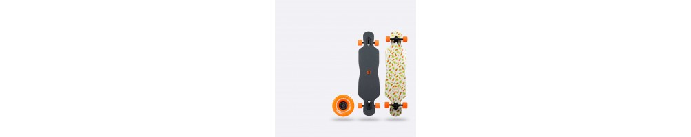 Longboards & Surf Skate